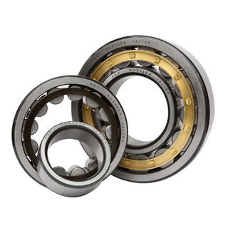 SL Double Row Full Complement Cylindrical Roller Bearings